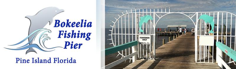 Bocilla fishing pier for Bokeelia fishing pier