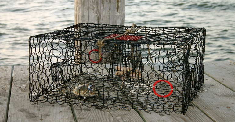 Bait and tackle pine island bait and crab traps for Fishing pole crab trap