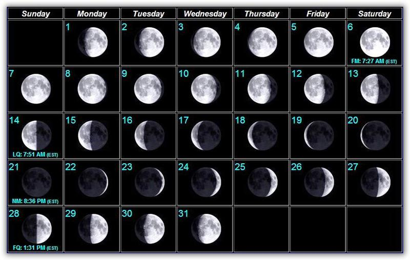 Moon phases bait and tackle pine island for Fishing moon phase